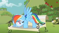 Rainbow Dash -You got it- S2E03