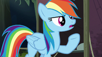 Rainbow Dash humoring Quibble's theory S6E13
