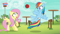Rainbow Dash tossing the ball to Fluttershy S6E18