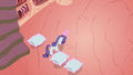 Rarity with her pillow armada S1E8.png