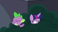 Spike teasing Twilight some more S9E5