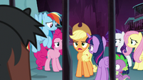 "Applejack ""which little protege?"" S8E25"