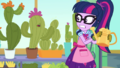 Cactus comes to life and sings to Twilight EGDS8.png