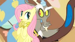Discord sweet talks Fluttershy S03E10
