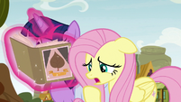 "Fluttershy ""we told them they were too young"" S9E22"