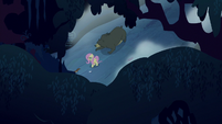 Overhead view of Fluttershy and animals S6E15