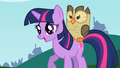 Owlowiscious mounted on Twilight S2E7.png