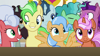 Ponies directly in front of the stage S8E16