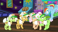 """Rainbow Dash """"not too excited?"""" S8E5"""