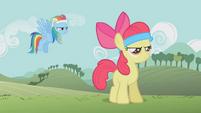 Rainbow Dash -Você está pronta-- T1E12