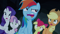 Rainbow Dash annoyed by the Fly-ders S7E16