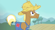 Trenderhoof wants to live on a farm S4E13