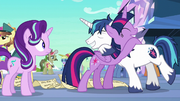 Twilight and Shining Armor hugging S6E1
