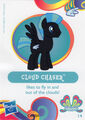Wave 11 Cloud Chaser collector card.jpg