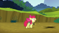 Apple Bloom -What do I do-- S5E04