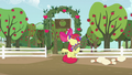 Apple Bloom puts pie to her face S5E17.png