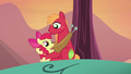 Apple Bloom wondering what to do S5E17.png