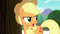 "Applejack ""hold on a tick"" S6E22"