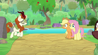 Autumn Blaze returns calmed down S8E23