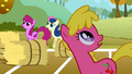 Berryshine, Cherry Berry, and Sweetie Drops looking at Rainbow Dash's flying hay bale S1E13.png