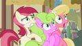 Flower ponies frightened S2E06.png