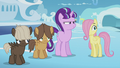 Foals still confused by Twilight's behavior S5E25.png