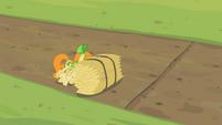 Golden Harvest S02E05