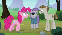 Pinkie Pie shocked to see Mudbriar S8E3