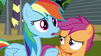Rainbow Dash -who's the leader-- S8E20