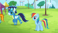 Rainbow sees the Wonderbolts walking away S4E10.png