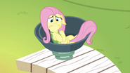 S06E18 Fluttershy wpada do katapulty