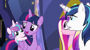 "Twilight Sparkle ""I shouldn't have agreed"" S7E3"