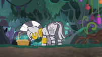 Zecora picks mushrooms in the forest S9E18