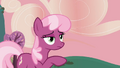 "Cheerilee ""That's an apple tree"" S2E17.png"