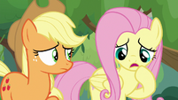 Fluttershy -not exactly- S8E23