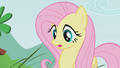 Fluttershy looks surprised S1E07.png