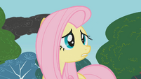 Fluttershy tries to warn everypony S1E7