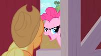 Pinkie Pie 'take a look inside the barn' S1E25
