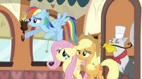 Rainbow Dash, Fluttershy, Applejack and griffon S2E24