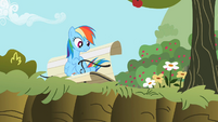 Rainbow Dash 'Right, Applejack?' S2E3
