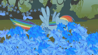 Rainbow Dash flying through the poison joke S1E09