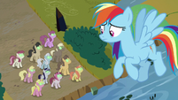 Rainbow looks down at Sombrafied unicorns S9E2
