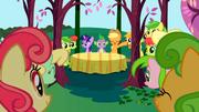 S01E01 Applejack przedstawia Twilight rodzinę