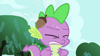 Spike gets hit with an acorn S4E23