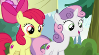 "Sweetie Belle ""well, we're excited too!"" S7E21"