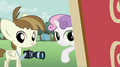 Sweetie Belle telling Featherweight to take photos S2E23.png