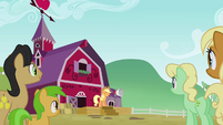 The Apples gathering to hear Applejack S3E08