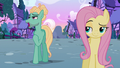 """Zephyr Breeze """"can't expect to find something"""" S6E11.png"""