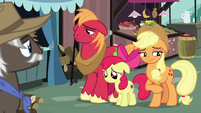 AJ, Apple Bloom, and Big Mac looking sad S7E13