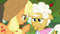 "Applejack ""you know what I mean"" S9E10"